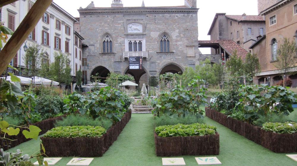 jardin potager, exemple 4